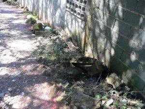 Lixo à beira da rua