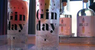 drinks com gin preparados para o Gin Day
