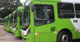ônibus de Embu das Artes estacionados lado a lado em um pátio