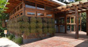 Fotografia do Centro de Educação para a Sustentabilidade (CES) Carapicuíba, com árvore ao redor