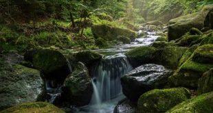 uma cachoeira caindo em meio a pedras cheias de limo