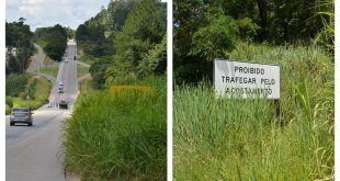 montagem com duas fotos de placas de trânsito na Rodovia Lívio Tagliassachi parcialmente cobertas pela vegetação