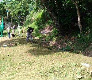 grama recém-cortada no Jardim Lina