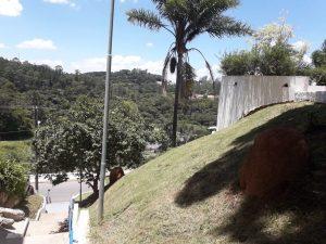 grama recém-cortada perto da Praça da Matriz