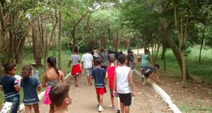 alunos do cca clarisse passeiam pelo parque raposo tavares