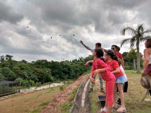 pessoas espalhando sementes ao vento
