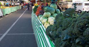 hortaliças expostas em feira de são roque