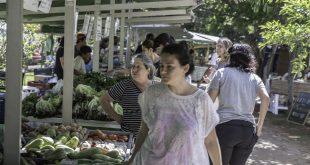 A Ecofeira Granja Viana faz 10 anos e volta ao Parque Teresa Maia em 20 de setembro