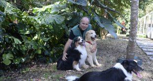 Luke Dog Walker: Um Centro de Recreação e Hospedagem para lá de bom para cachorro