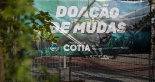 Semana da árvore: Secretaria do Verde faz pedágio ambiental na Feira Noturna de Cotia